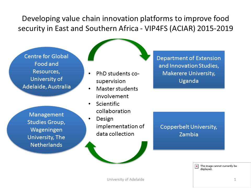 developing-value-chain-innovation-platforms-to-improve-food